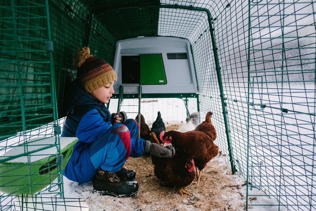 En pojke sitter i en Eglu-hönsgård som står ute i snön