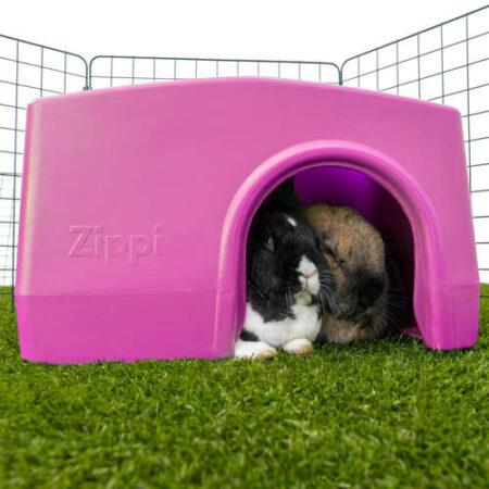 Två kaniner som gömmer sig i ett lila gömställe i en kaningård