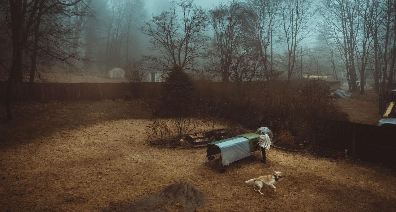 Hönsägare plockar in ägg i ett höstlandskap